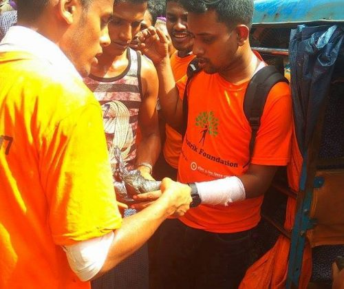 Support for Rohingya