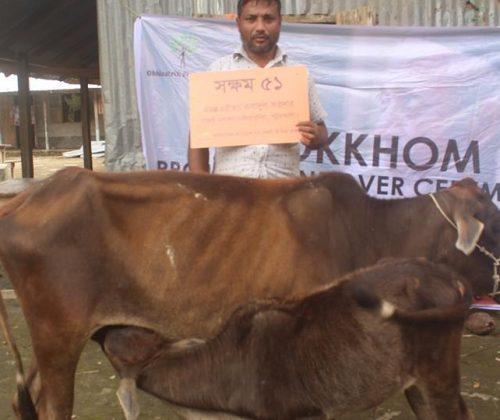 SHOKKHOM Project No 51: Cow Project